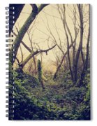 In The Forest Of Dreams Spiral Notebook