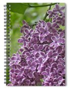 In The Garden. Lilac Spiral Notebook