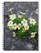 In The Garden Path Spiral Notebook