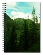 In The Green Spiral Notebook
