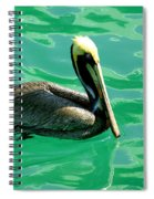 In The Green Zone Spiral Notebook