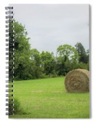 In The Hayfield  Spiral Notebook