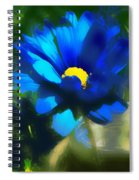 In The Light Spiral Notebook