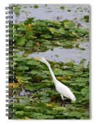 In The Lily Pads Spiral Notebook