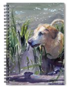 In The Marsh Spiral Notebook