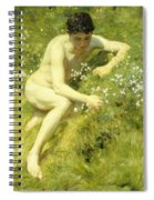 In The Meadow Spiral Notebook