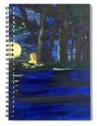 In The Moonlight Spiral Notebook