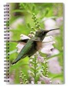 In The Obedient Garden Spiral Notebook