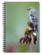 In The October Rain  Spiral Notebook
