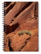 In The Rock Life Will Come Spiral Notebook