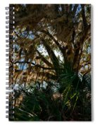 In The Shade Of A Florida Oak Spiral Notebook