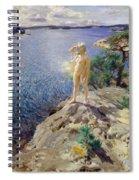 In The Skerries Spiral Notebook
