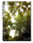 In The Summer Time When The Weather Was Fine Spiral Notebook
