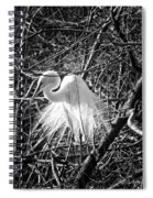 In The Trees Spiral Notebook