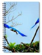 In The Wild Spiral Notebook