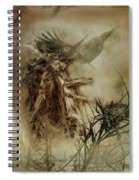 In The Wildwood Spiral Notebook