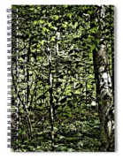 In The Woods Wc Spiral Notebook
