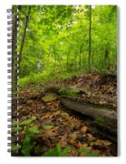 In The Woods_2 Spiral Notebook