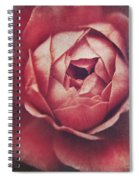 In Tough Times Spiral Notebook