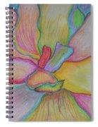 Incarnation Spiral Notebook