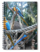 Incredible Sight Spiral Notebook