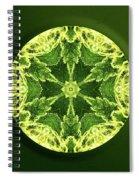 Independence  Spiral Notebook