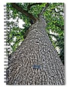 Independence Tree Spiral Notebook