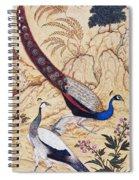 India: Peafowl, C1610 Spiral Notebook