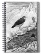 India: Water Ouzels Spiral Notebook