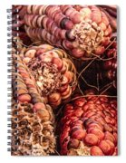Indian Corn Spiral Notebook