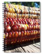 Indian Corn On The Cob Spiral Notebook