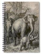 Indian Elephant, Endangered Species Spiral Notebook