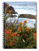 Indian Paintbrush At Point Lobos Spiral Notebook