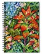 Indian Paintbrush Spiral Notebook
