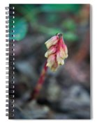Indian Pipe 1 Spiral Notebook