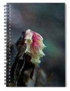 Indian Pipe 2 Spiral Notebook