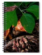 Indian Pipe 7 Spiral Notebook