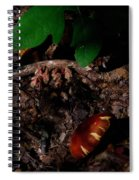Indian Pipe 8 Spiral Notebook