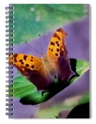 Indiana Angel Wing Spiral Notebook