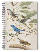 Indigo Bird Spiral Notebook