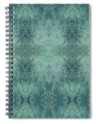 Indigo Lotus Lace Pattern 1 Spiral Notebook