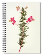 Indigo Plant Spiral Notebook