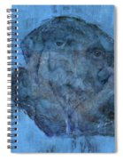 Indistincint Blues Spiral Notebook