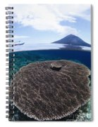 Indonesia, Coral Reef Spiral Notebook