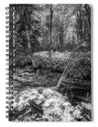 Infra Creek  Spiral Notebook