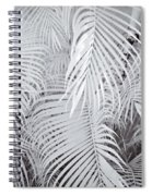 Infrared Palm Abstract Spiral Notebook