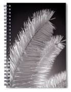 Infrared Palm Frond Spiral Notebook