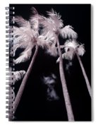 Infrared Palm Trees Spiral Notebook