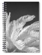 Infrared Sago Palm Spiral Notebook