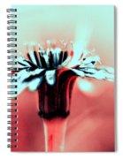 Infrared Wildflower Spiral Notebook